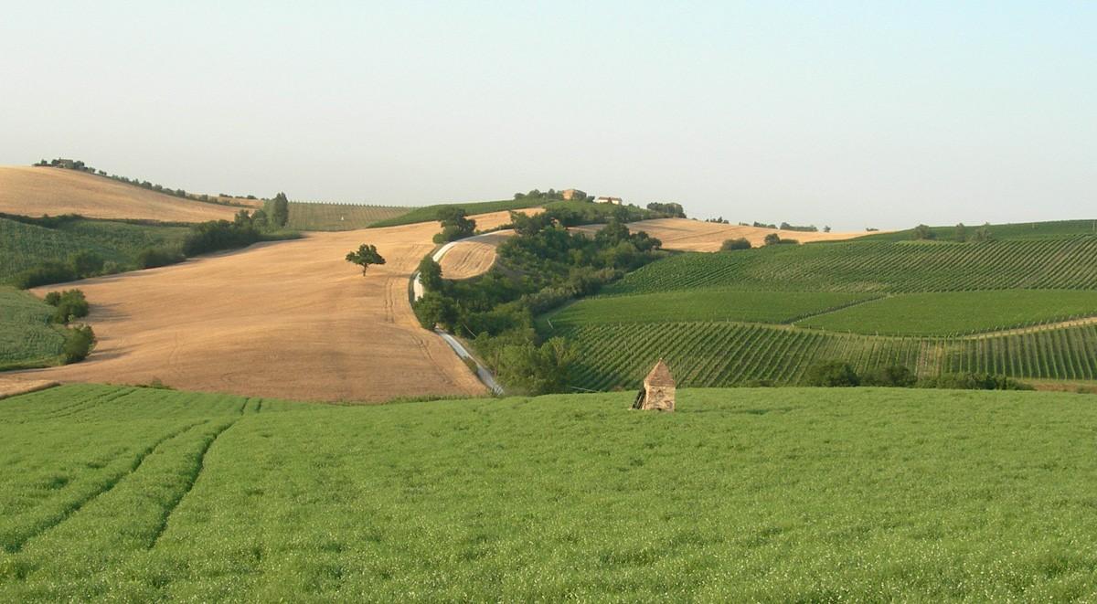 Premio per la Biodiversità nell'Agro-Alimentare delle Marche